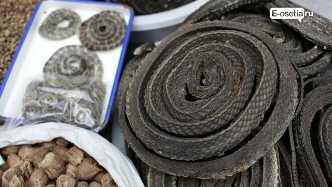 Спасет ли коронавирус диких животных от вымирания? (эпидситуация), фото-1