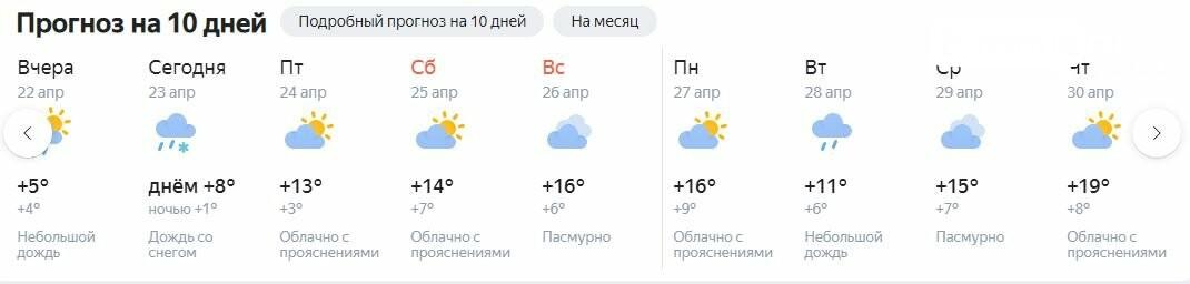 погода от Яндекса